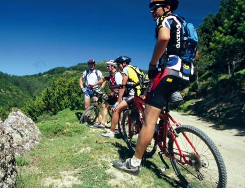 La Ruta de la Garnacha en bicicleta – Guía de Rutas en BTT y dónde alojarse