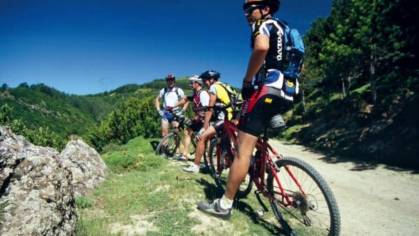Ruta de la Garnacha en bicicleta